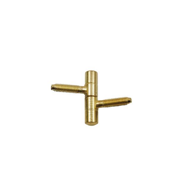 PIPE DOOR HINGE / H.38-D.8 / GOLD